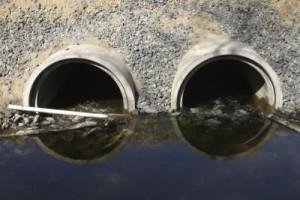 Pesticidi in Italia inquinano le acque