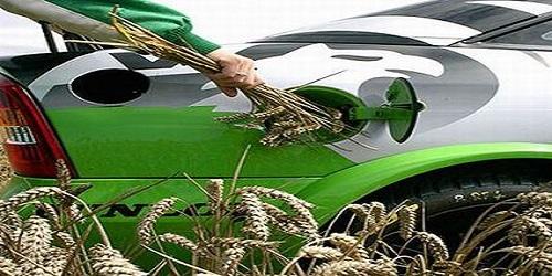 biofuel fonti rinnovabili