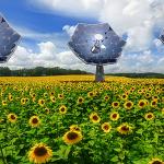 """Un nuovo strumento nella tecnologia solare creato da IBM e chiamato """"Sunflower"""" fornisce non solo l'elettricità - è in grado di desalinizzare l'acqua per i servizi igienico-sanitari e per bere"""