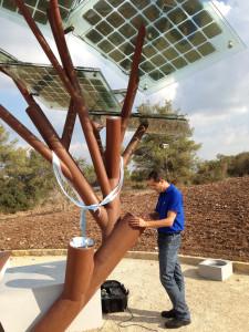 Un uomo naviga in Internet su un tablet collegato a un albero solare in Israele.