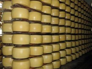 energia al formaggio